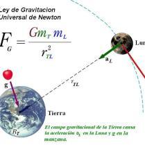 ley-de-gravitacion-1.jpg
